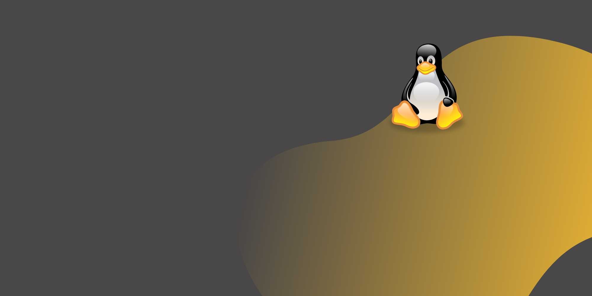 linux-shell-scripting-course