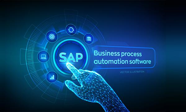 Small SAP Companies